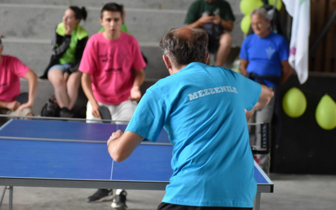 Ping-pong Torneo 2
